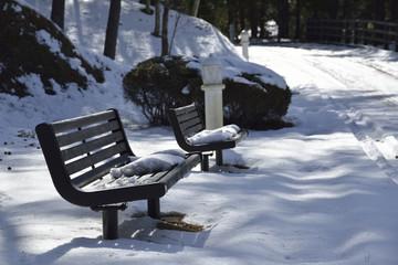 雪が積もった公園のベンチ