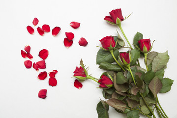 Fototapeta czerwone róże i płatki obraz