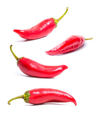 Set of four isolated on white red hot peppers. Acute spice for food. Healthy food. Bright colors.