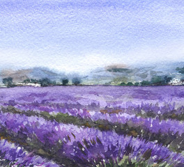 Nature Scene  with Lavender Field
