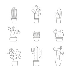 monochrome vector icons with cactus for your design