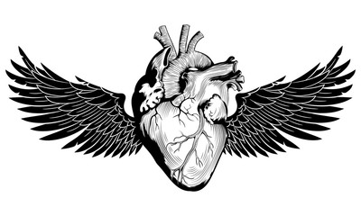 Winged Human Heart