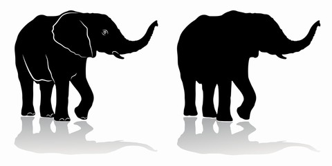 silhouette of elephant, vector drawing