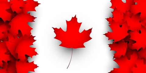 Flag of Canada design concept. Vector illustration of Canadian flag in national colors composed from fallen maple leaves on white. Canada day background.