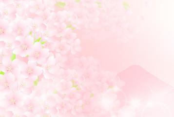 富士 桜 日本の春