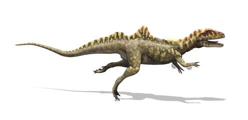 Concavenator Dinosaur