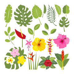 set of tropical flowers and leaves