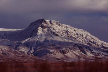 Violet Winter Landscape