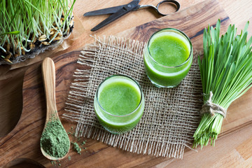 Two glasses of green juice with freshly harvested barley grass