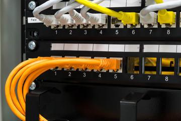 Netzwerktechnik LAN-Kabel in einem Switch