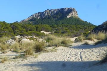 Cala en Mallorca, Islas Baleares (España)