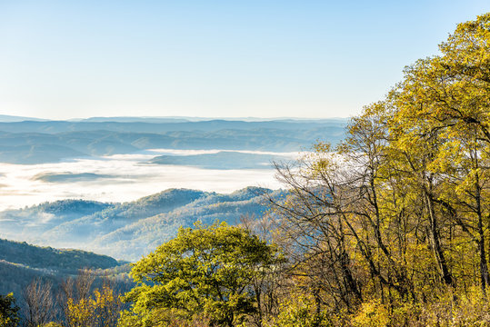 Overlook of West Virginia mountains in autumn fall with foliage and mist fog clouds covering valley in morning sunrise sunlight