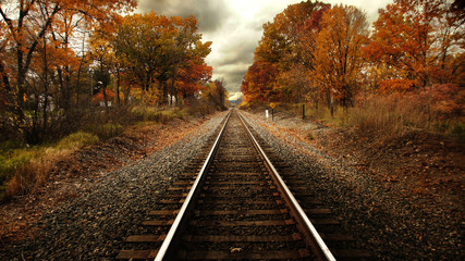 Deurstickers Spoorlijn Train tracks in fall
