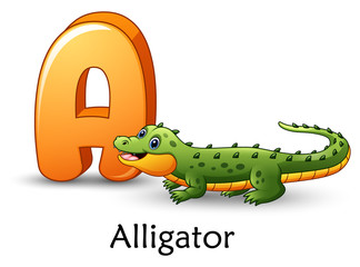 Letter A is for Alligator cartoon alphabet