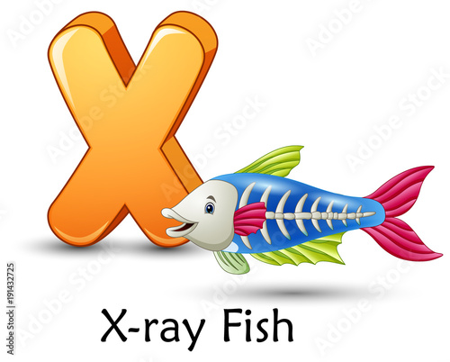 Letter x is for x ray fish cartoon alphabet stock image for X ray fish