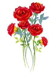 Watercolor painting  red bouqet, happy postcard colorful of roses.