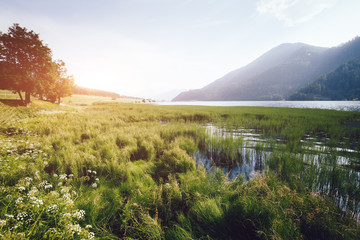 Great of the alpine Haidersee lake. Location San Valentino Alla Muta village, Italy alps, Europe.