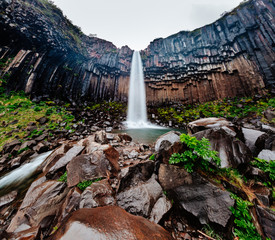 Great view of Svartifoss waterfall. Location Skaftafell National Park, Iceland.