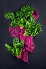 freshly harvested spinach on dark kitchen plate and napkin can be used as background