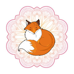 Vector image of a cute fox design isolated on a white background