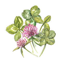 A composition of clover red flowers and leaves - a quatrefoil and a shamrock. Watercolor botanical illustrations. Happy Saint Patricks Day design element.