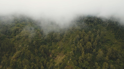 Mountain forest in the fog and clouds. Aerial view of over tropical rainforest mountains with white fog, clouds Bali, Indonesia. Low lying cloud over evergreen forests.