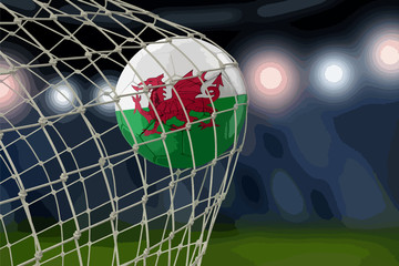 Welsh soccerball in net