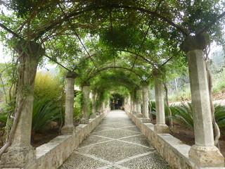 Los Jardines de Alfabia  en Buñola (Mallorca), en  la carretera de Palma a Sóller