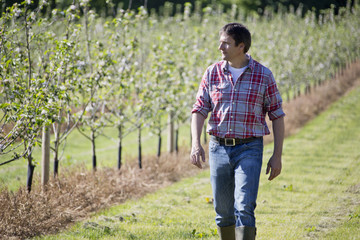 Man walking in field during spring