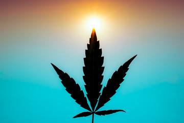 marijuana joint weed smoking close up on background.