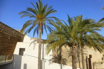 Palma, capital de la isla española de Mallorca, ciudad turística situada en el oeste del mar Mediterráneo en las Islas Baleares (España)