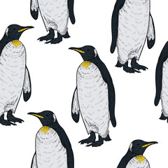 Seamless pattern with penguins on white background. Vintage vector illustration