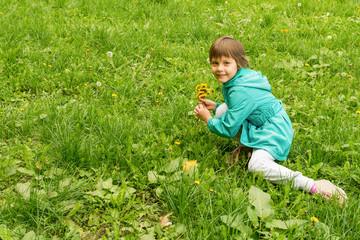 The little girl pick flowers