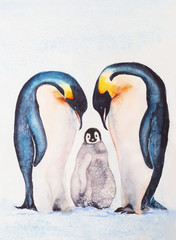 Family of emperor penguins with a chick. Watercolor drawing.