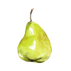 Pear, isolated on white background. Watercolor illustration