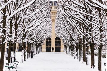 Poster de jardin Paris Paris under the snow