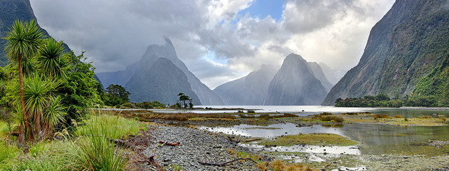 Tuinposter Nieuw Zeeland Panoramic view of Milford Sound (Fjordland, New Zealand)