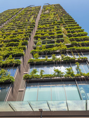 Upward view of building with plants on the facade