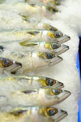 Fresh Atlantic fish On Ice at fish market in Sydney, New South Wales, Australia