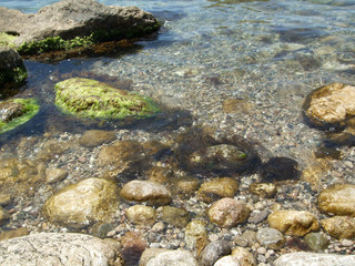 Big Rocks and green stones in the Black sea water