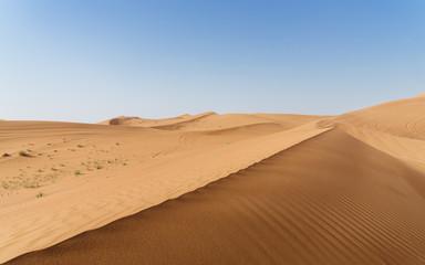 Hypnotic patterns of sand desert in the UAE desert, near Dubai, UAE