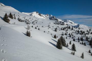 Randonnée en raquettes à neige en hiver , alpes françaises