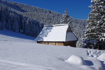 Fototapeta Winter Tatras Rusinowa