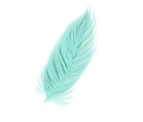 Colorful hand drawn bright blue design feather on white background, cartoon isolated illustration painted by pen and pencil paper chalk, high quality