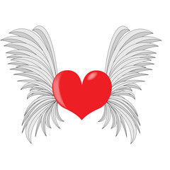 Red heart with wings. White background.