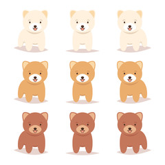 Set of cute young short haircut Pomeranian puppy dog. Cream, orange, red brown color. Lovely adorable pet. Flat design. Vector illustration