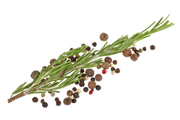 Fresh rosemary and peppercorns isolated on white background