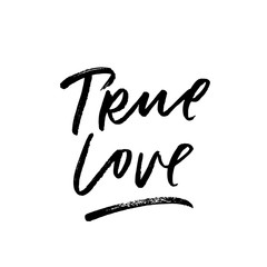 True Love. Valentine's Day calligraphy phrases. Hand drawn romantic postcard. Modern romantic lettering. Isolated on white background.