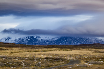 Snowy Mountains across from Tundra in the Icelandic Wilderness