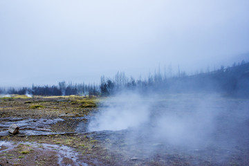 Steaming Geyser Field in Iceland's Golden Circle